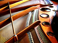 Grand piano frame and strings